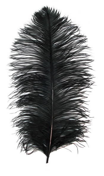 OSTRICH FEATHERS First Quality