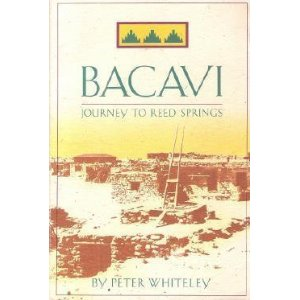 Bacavi- Journey To Reed Springs