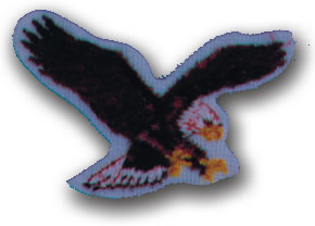 EMBROIDERED PATCHES -SEW-ONS - EAGLE