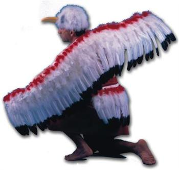 EAGLE DANCE KITS